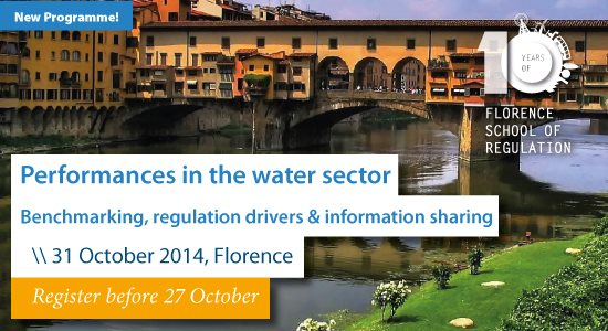 Performances in the Water Sector: a roundtable for local regulation