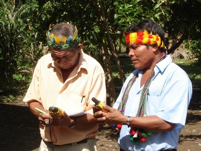 The potential of collective drones' monitoring for Indigenous communities at risk