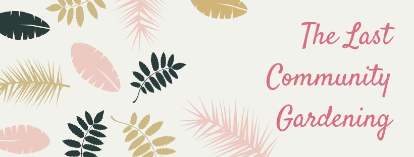 Urban Clinic LabGov EDU 2019: third community gardening session