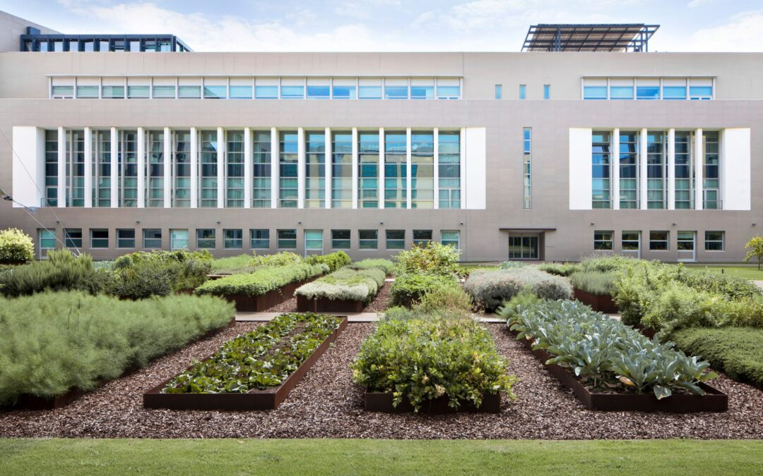 How green spaces can influence employees' productivity and happiness